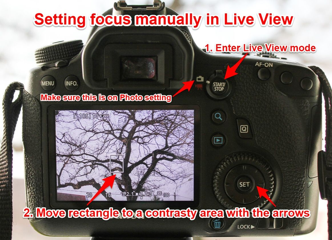 Canon manual focus in Live View mode