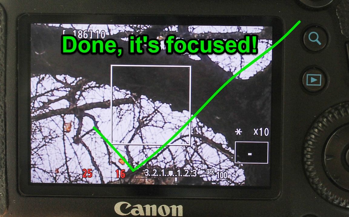 Focused image on Live View on Canon 6D