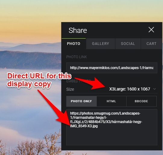 Smugmug single image sharing options