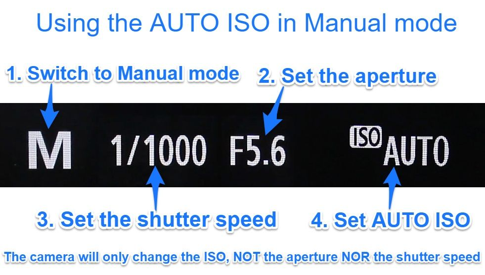 using Auto ISO in manual mode