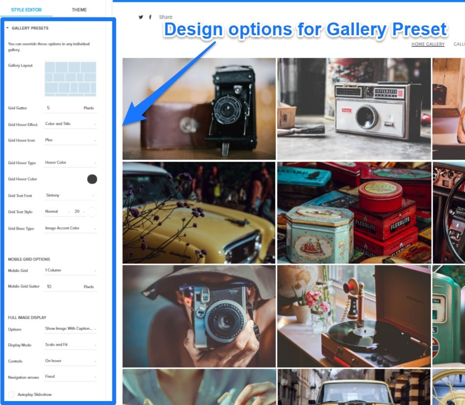 design options customize galleries at Pixpa